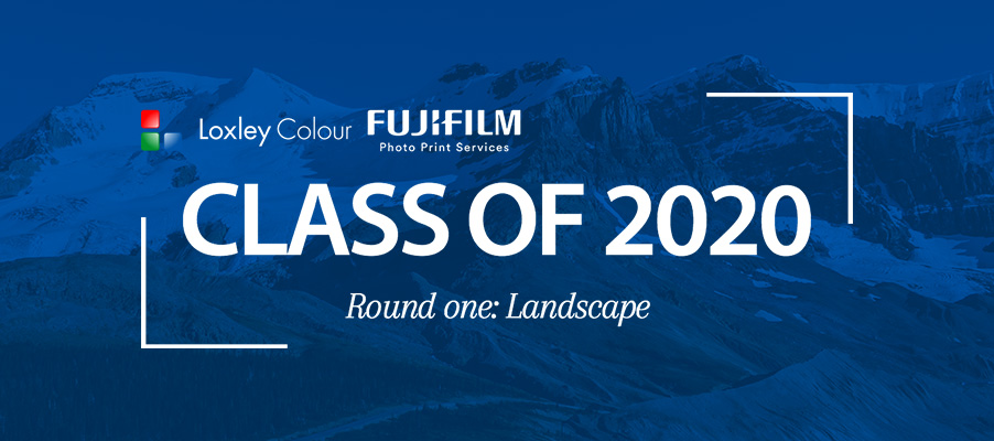 Class of 2020: The Landscape judges